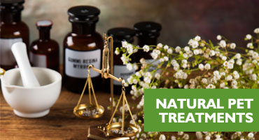 animal natural remedies