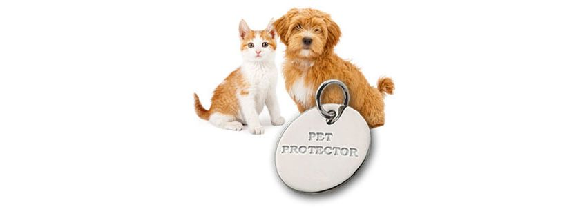 pet protector flea tag